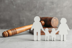 Family Law Action Plan