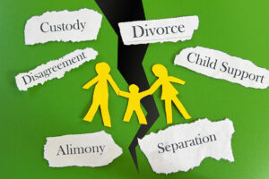 Family Law - Domestic Relations Law